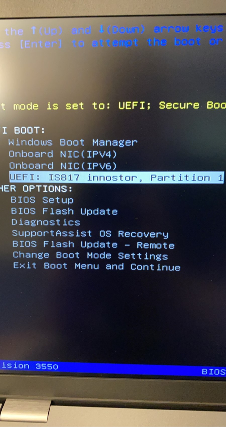 BIOS screen showing the appropriate USB boot option